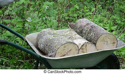 hand firewood barrow - Worker hands with gloves load...