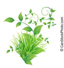 bunch grass and green leaves