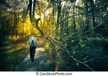 Man walking in Woods - Man walking through dark woods with...