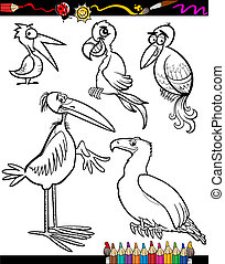Cartoon Birds for Coloring Book - Coloring Book or Page...