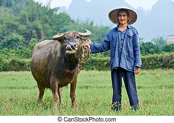 chinese agricultural farm worker - asian chinese farm worker...