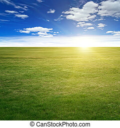 Clear beauty landscape. Summer background