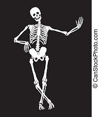 Skeleton - Funny vector skeleton isolated over black...