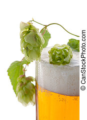 Glass of beer and hop plant