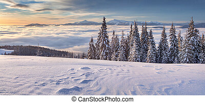 Beautiful winter panorama of the mountains. Mountain valley...