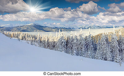 Panorama of the foggy winter morning in mountains