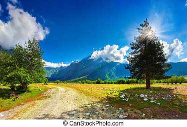 Beautiful view of alpine meadows. Upper Svaneti, Georgia,...
