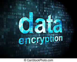 Privacy concept: Data Encryption on digital background -...