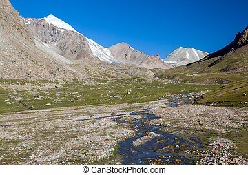 River in high Tien Shan mountains. Kirgizstan