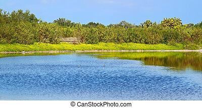 Eco Pond Everglades National Park