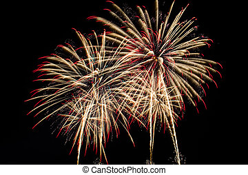 Fireworks - Colorful fireworks in celebration of the big day...