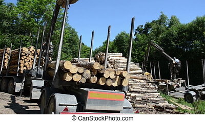 cut logs equipment - heavy equipment working in the woods...