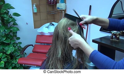 hair lock comb - hairdresser splits lock of long blond hair...