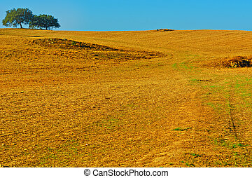 Autumn - Sloping Hills of Portugal in the Autumn