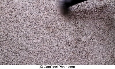 Carpet Clean Two - Carpeting and spot treating carpet two