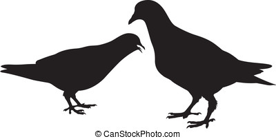 Pigeon. silhouette. Vector