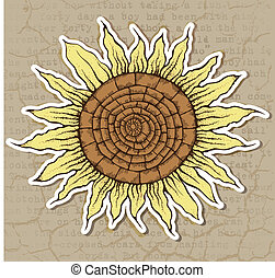 sunflower - Illustration of stylized sunflower