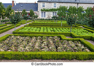 Gardens and Chateau de Villandry in Loire Valley in France...