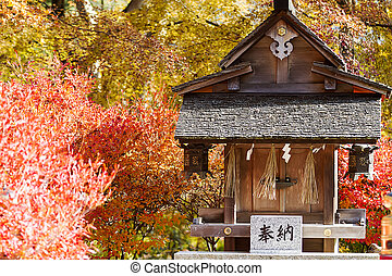 Autumn Japanese garden with maple for adv or others purpose...