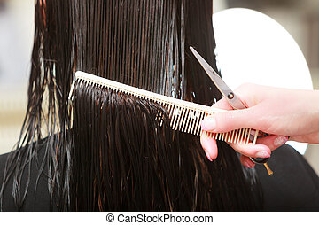 Hairstylist cutting hair woman client in hairdressing beauty...