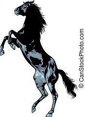 black wild horse isolated on the white background