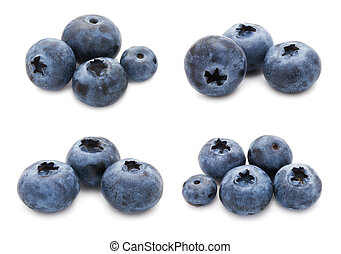 Blueberry set - Collection of fresh blueberry or bilberry...