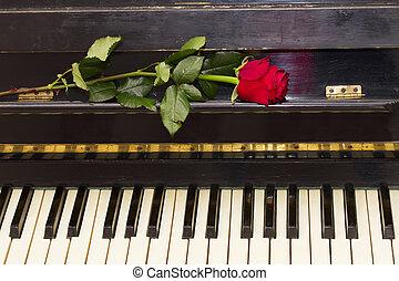 Ros, 鋼琴, 紅色, 一