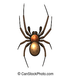 Spider Vector isolated illustration on white background