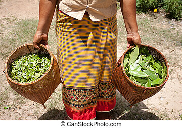 Leaves a natural material Process of weaving, dyeing,...