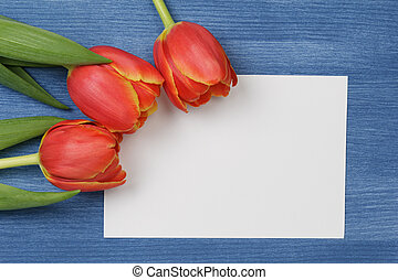 tulip with blank paper note with space for text