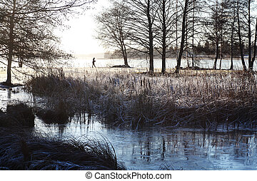winter morning in the park by lake