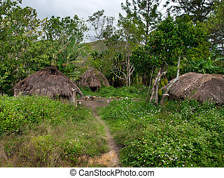 A traditional village in Papua Province, Indonesia, island...
