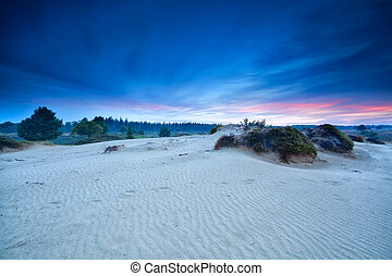 summer sunrise over sand dunes