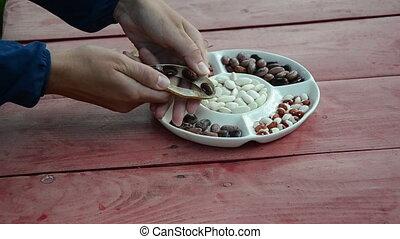 hands husk bean - close of gardener hands shell husk...