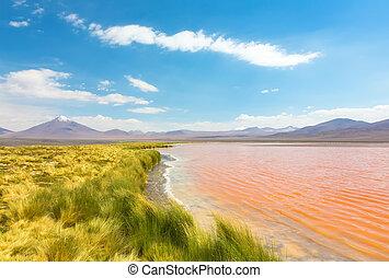 Landscape of lake Laguna Colorada