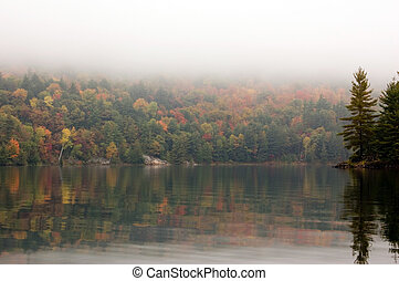 Reflection - Shore of George Lake in overcast day. Killarney...