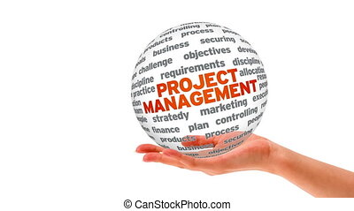 Project Management Word Sphere - A person holding a 3D...