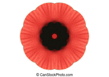 poppy created as a kaleidescope over a light background