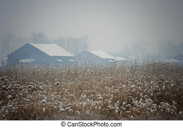 Beautiful winter landscape ecology park in south korea,SORE