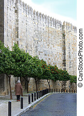 Cobblestone street in Alfama, Portugal - Woman walking along...