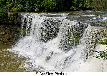 Chargrin Falls - Water falling quickly over rocks surroundd...