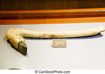 Neolithic remains in South Korea