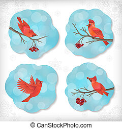 Winter Christmas Sticker Birds Rowan Tree Branches - Winter...