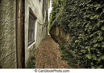 Alley in Charleston, SC - Lonely alley in Charleston