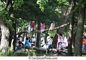 Children playing in the park woods