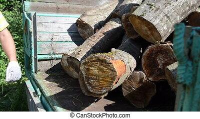 trailer log load worker