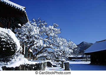 Woljeongsa temples in south korea, winter landscape
