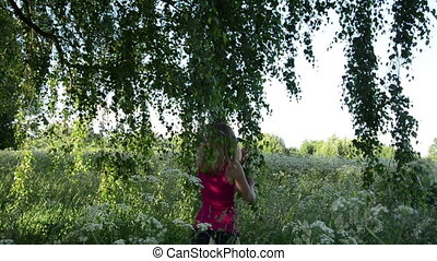 meadow birch girl - young girl walking in a meadow between...