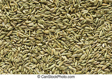 Fennel Seed Background - fennel seed spice macro background...