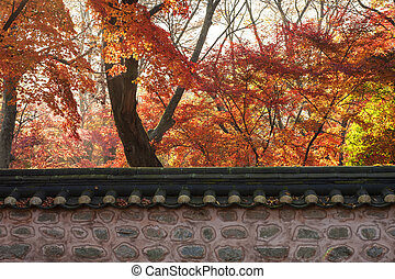 Autumn landscape with temples in south korea